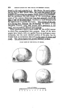 Página 658