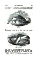 Página 745