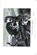 Página 48