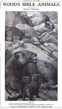 Página 975