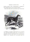 Página 197