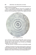 Página 878