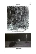 Página 953