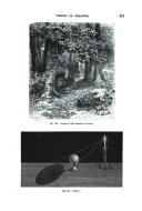 Página 871