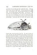 Página 292