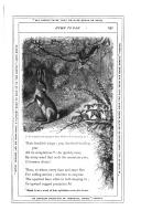 Página 231