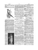 Página 3702