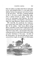 Página 141