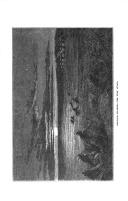 Página 379