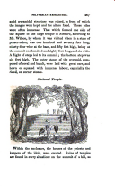 Página 207