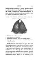 Página 131