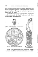 Página 226