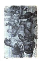 Página 328